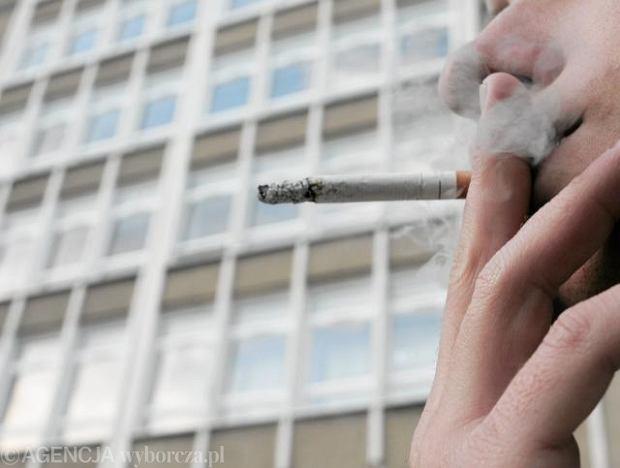 Na dymku z rakiem.