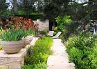 """Ogr�d - """"wspomnienie z wakacji"""". Wystawa Chelsea Flower Show 2010. W tym ogrodzie zwyk�e Irysy staj� si� wyj�tkowe, dzi�ki eleganckiej oprawie donic"""