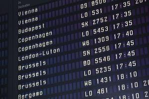 Dziwny rozk�ad lot�w z Ok�cia: wiele razy ten sam lot