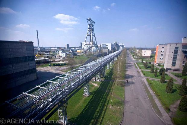 Akcje JSW na zamknięciu wróciły do poziomu 136 zł