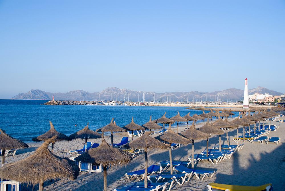 alcudia, majorka, plaża, hiszpania, wyspa