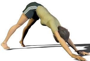 Pies z głową w dół - pozycja jogi, ćwiczenia rozciągające dla biegaczy