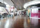 Lotnisko w Wenecji za darmo uczy pasa�er�w angielskiego