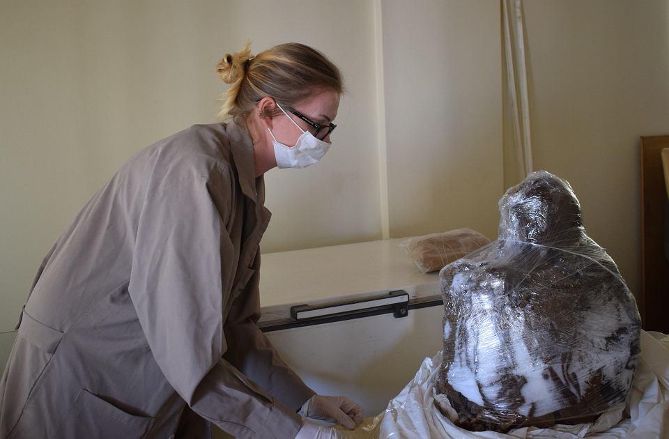 Dagmara Socha z Ośrodka Badań Prekolumbijskich na Uniwersytecie Warszawskim odmraża mumię dziecka oblepioną bryłą ziemi