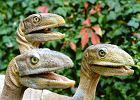 Smok wawelski �y� tu naprawd�! Paleontolodzy odkryli w Polsce bonanz�