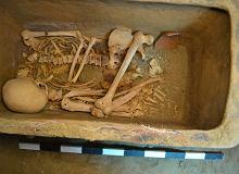 Koło ciągnika wpadło w dół. Pod ziemią odkryli grobowiec z początków kultury starożytnej Grecji