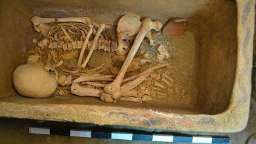 Rolnik odkrył grobowiec z początków kultury starożytnej Grecji
