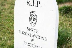 Ze schroniska Pasterka skradziono pomnik postawiony przez turyst�w