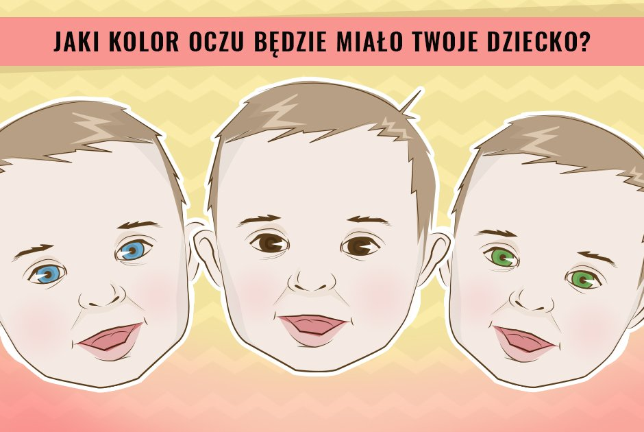 kolo kolorów po polsku sklep