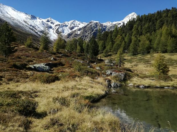 Jesień w dolinie Val Senales w Południowym Tyrolu
