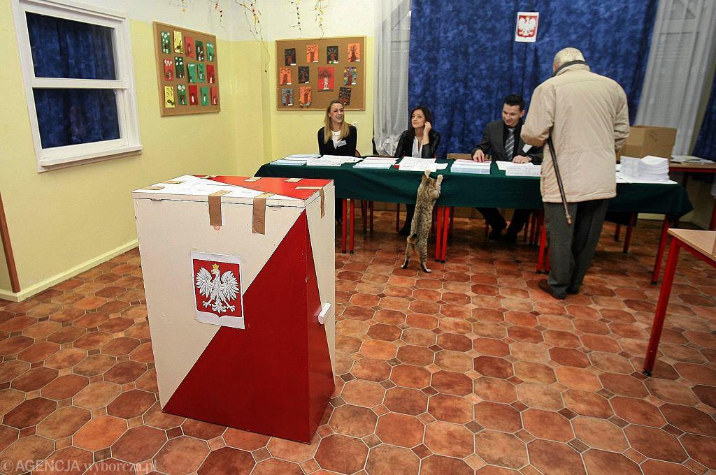 Wybory samorządowe w świetlicy socjoterapeutycznej w której mieszka kot, zaprzyjaźniony z tutejszymi dziećmi. Czuje się tu swobodnie nawet podczas głosowania; Białystok, 2014 r.