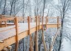 Wieża i ścieżka widokowa wśród koron drzew w Krynicy-Zdroju
