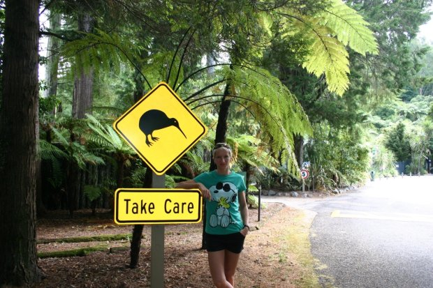 Uwaga na Kiwi! (zdjęcie prywatne).