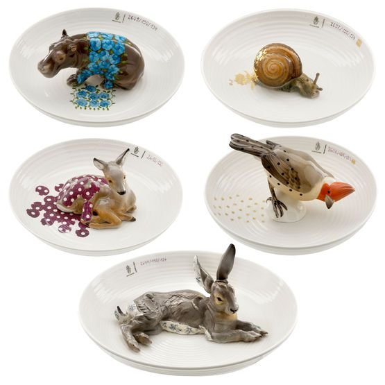 Animal Bowls