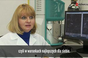 Dżdżownice pomogą w walce z rakiem? Polscy naukowcy dowodzą, że to możliwe