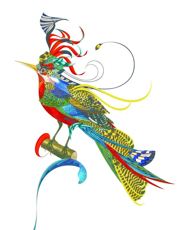 ''Księga ptaków'' - ilustracja Bożki Rydlewskiej