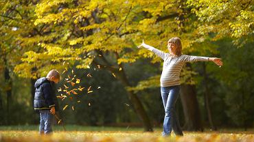 Długoterminowa prognoza pogody. Czy koniec października będzie słoneczny?