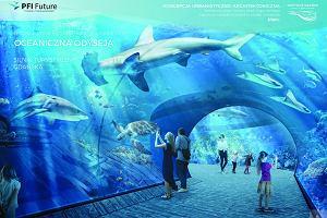 Gdańsk będzie miał oceanarium. Budowa rozpocznie się jeszcze w tym roku