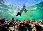 To warto zabra� na urlop na rafy egipskiego morza: 8 aparatów do zdj�� pod wod�
