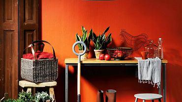 <B>Weselszy niż brąz, z którego się wywodzi i nie tak jaskrawy jak jego kuzyn oranż. Rudy odcień może pogodzić amatorów barw spokojnych z lubiącymi żywe kolory.</B> <BR />MEBLE: konsolka - 1190 zł, stołek (drewno) - 539 zł, Inne Meble; stołek (metal) - 280 zł, Warsztat Woni.  POZOSTAŁE: okiennica - 690 zł, Nap; skrzynki - 130 zł/szt., łopata - 169 zł, Warsztat Woni; sztuczna gałąź (w skrzynce) - 185 zł, Decolor; sztuczne rośliny (w doniczkach) - 19,99 zł/szt.,  doniczki - 4,99 zł/szt., koc - 39,99 zł, dywan - 1290 zł, IKEA;   konewka - 81 zł, Łodyga; lampa - 329 zł, Duka; kosz - 399 zł, House & More; kalosze - 200 zł, Nap;  na konsolce: misa - 135 zł, sztuczne jabłka - 28 zł/szt., karafka - 137 zł, Inne Meble;   kura - 125 zł, Warsztat Woni;   butelka - 20 zł, Red Onion; szal - 59 zł, Nap; rośliny doniczkowe - 39 zł/szt., Łodyga; kubek - 1,99 zł, IKEA. NA ŚCIA-NIE: Far-ba z mie-szal-ni-ka 45 zł/l Du-lux