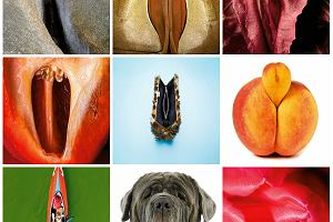 Aplikacja do zarządzania waginą: pierwsze na świecie interaktywne genitalia