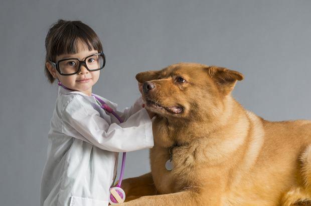 Kiedy dziecko jest gotowe na zwierzę?