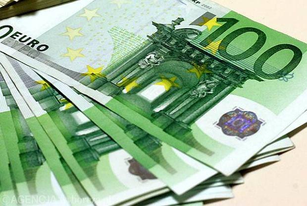 Euro najs�absze wobec dolara od ponad dw�ch lat