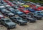 Ogólnopolski Zlot Fordów Mustangów. Znamy datę i miejsce!