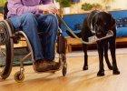 Stwardnienie rozsiane: czy leczenie zatrzyma chorob�