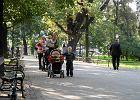 500 z� na dziecko w Sejmie. Nowoczesna: Kupowanie g�os�w za pieni�dze publiczne