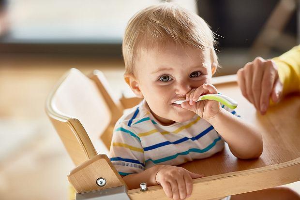 Maluszek i jego przygoda z pierwszymi smakami