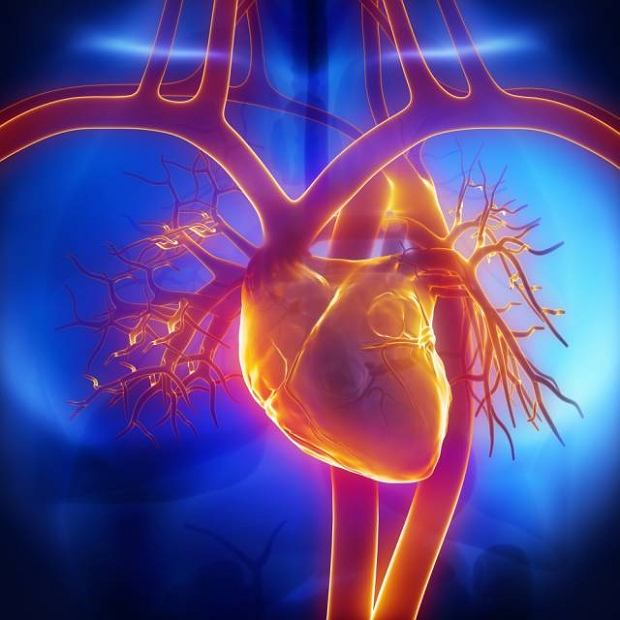 Zapalenie osierdzia: przyczyny, objawy, diagnostyka i leczenie