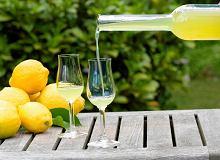 Wino cytrynowe - ugotuj