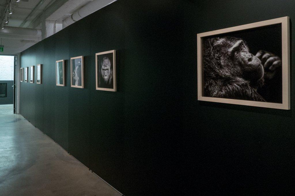 """Wystawa """"inHuman"""" w Leica 6×7 Gallery Warszawa (fot. Patryk Wi�niewski)"""
