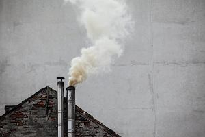 Ministerstwo nie chce certyfikować węgla. Dalej będziemy kupować kota w worku