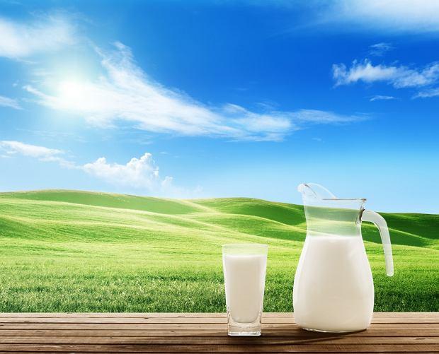 Mleko z nerkowca zawiera sporo białka i fosforu