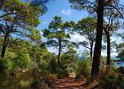 Szlak Licyjski. Lycian Way, czyli Szlak Licyjski zajmuje czo�owe miejsca w rankingach najciekawszych d�ugodystansowych szlak�w �wiata. Ci�gnie si� przez prawie 500 km nad po�udniow� lini� brzegow� Turcji, wiod�c przez setki wa�nych archeologicznie miejsc. Szlak zosta� zbadany i oznaczony na pocz�tku XXI w. Prowadzi od Fethiye do Antalyi wok� staro�ytnej Licji, przez g�ry Taurus i wzd�u� wybrze�a Morza �r�dziemnego.