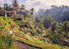 Wyspa Bali słynie między innymi z nietypowych krajobrazów