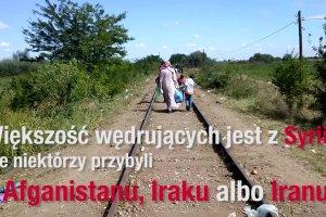 Uchodźcy na granicy serbsko-węgierskiej marzą o Europie bez granic