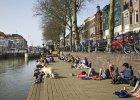 Wielki eksperyment spo�eczny: Utrecht zap�aci 900 euro miesi�cznie wszystkim potrzebuj�cym