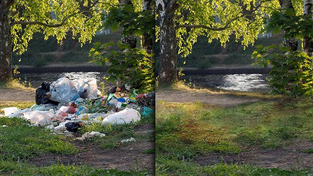 """A mogłoby być tak pięknie... """"Posprzątaliśmy"""" zdjęcia lasów. Oto efekt"""