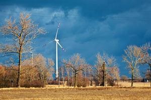 Ministerstwo Rolnictwa da 17 mln euro na produkcj� energii z odnawialnych �r�de� energii