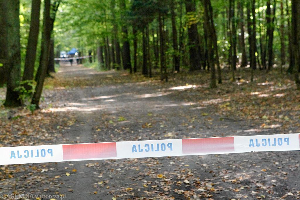 Leśna droga i policyjna taśma (zdjęcie ilustracyjne)