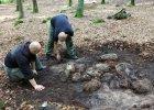 Kilkadziesi�t kurhan�w odkryto w okolicy Bytowa