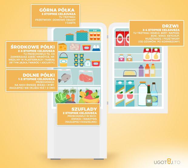 Jak układać produkty w lodówce?
