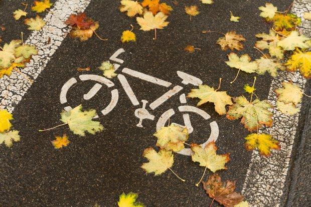 jesień, ścieżka rowerowa