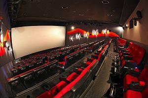 """""""Pitbull"""" w pierwszej dziesiątce najchętniej oglądanych europejskich produkcji. Sprawdzamy, w jakim stanie jest europejskie kino"""