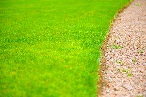 Kiedy przeprowadzić aeracje i wertykulację trawnika?