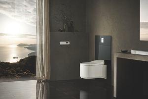 Toaleta myjąca - odkryj nowy poziom higieny