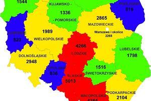 Polska mapa wypadk�w | Raport